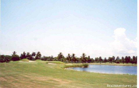 Great Golfing in Miami Miami Free Zone, Florida  Articles