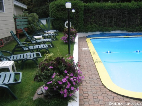 Pool and Lawn (#4 of 7) - Town & Country Motor Inn