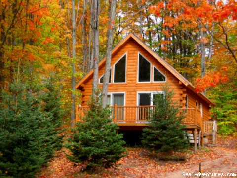 Base Camp - Northern Michigan  Cabin/Cottage Vacation Rental
