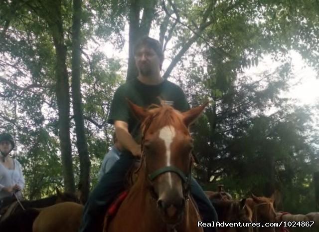 - Scenic Horseback  Lessons