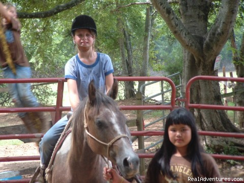 Image #17 of 26 - Scenic Horseback  Lessons