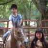 Scenic Horseback  Lessons