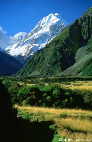 Hunting & Fishing Tours of New Zealand: Guided Hunting for Trophy and Free Range Game