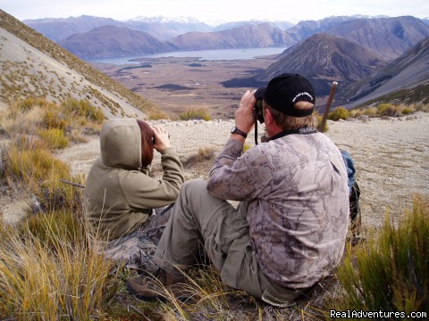 Guided Hunting for Trophy and Free Range Game (#3 of 4) - Hunting & Fishing Tours of New Zealand