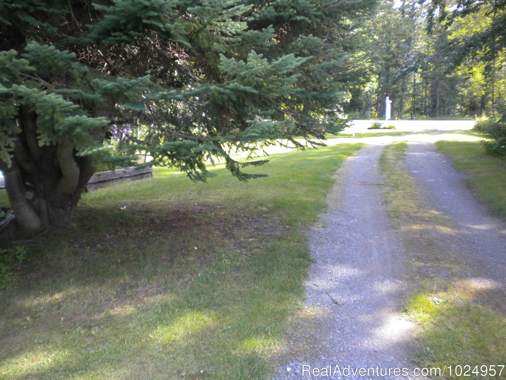 Cottage driveway | Image #12/13 | Trail River Gardens Cottage