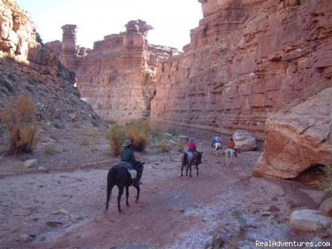 Photo #1 (#1 of 23) - Horses, Hiking and tours in Utah