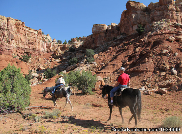 - Horses, Hiking and tours in Utah