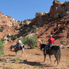 Horses, Hiking and tours in Utah