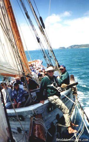 Sailing in the Bay of Islands - Explore New Zealand with Black Sheep Touring Co.