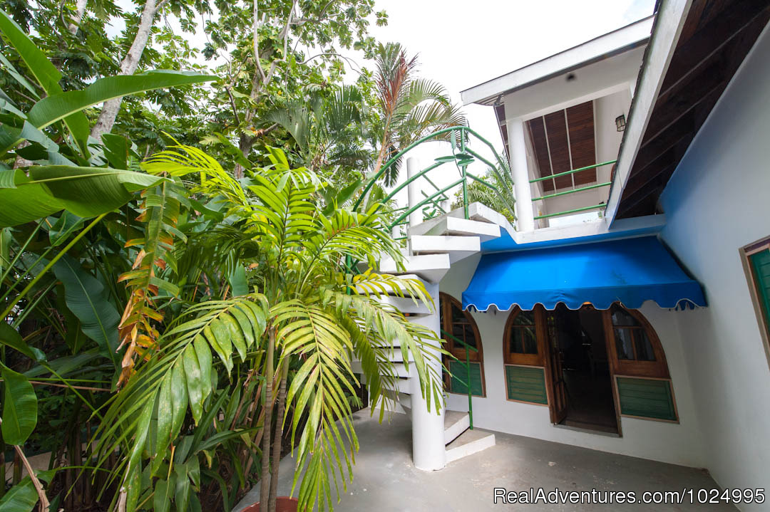 Lower Jungle House Patio 1 | Image #2/16 | Caribbean Castles at Beach House Villas
