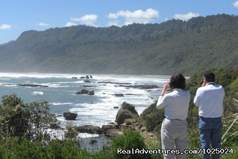 New Zealand Custom Tours by Tailored Travel westcoast south island