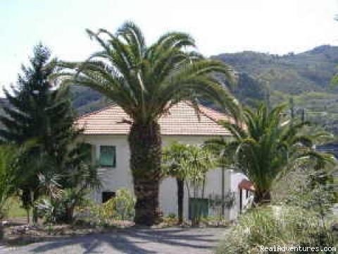 Blumenriviera Casa Le Palme