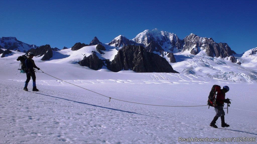 New Zealand Glacier Traverse | Image #5/9 | New Zealand Wild Walks with Aspiring Guides
