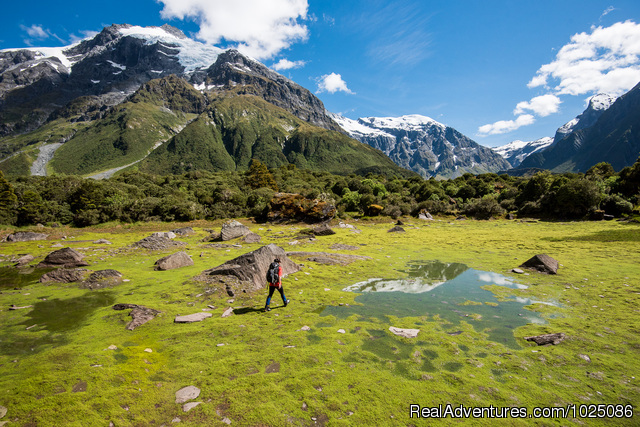New Zealand Wild Walks with Aspiring Guides