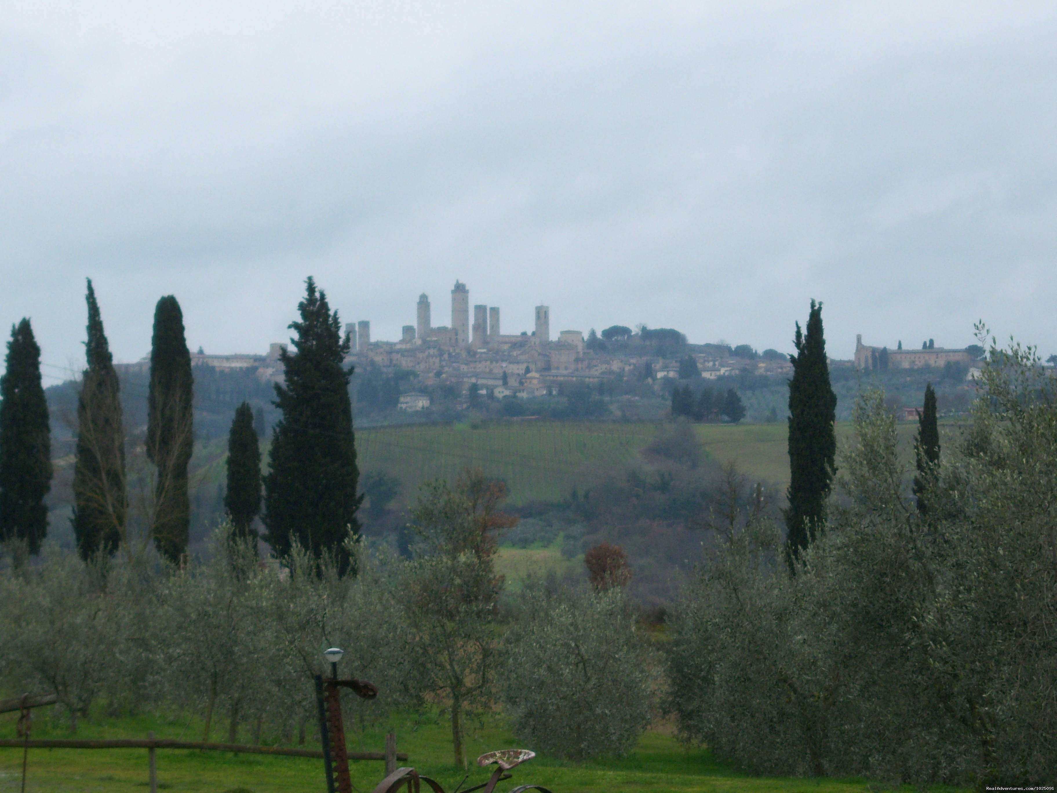 Visit to San Gimignano on our Best of Tuscany Tour