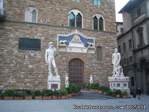 Palazzo Vecchio - the place where the Original David was (#1 of 13) - Artviva