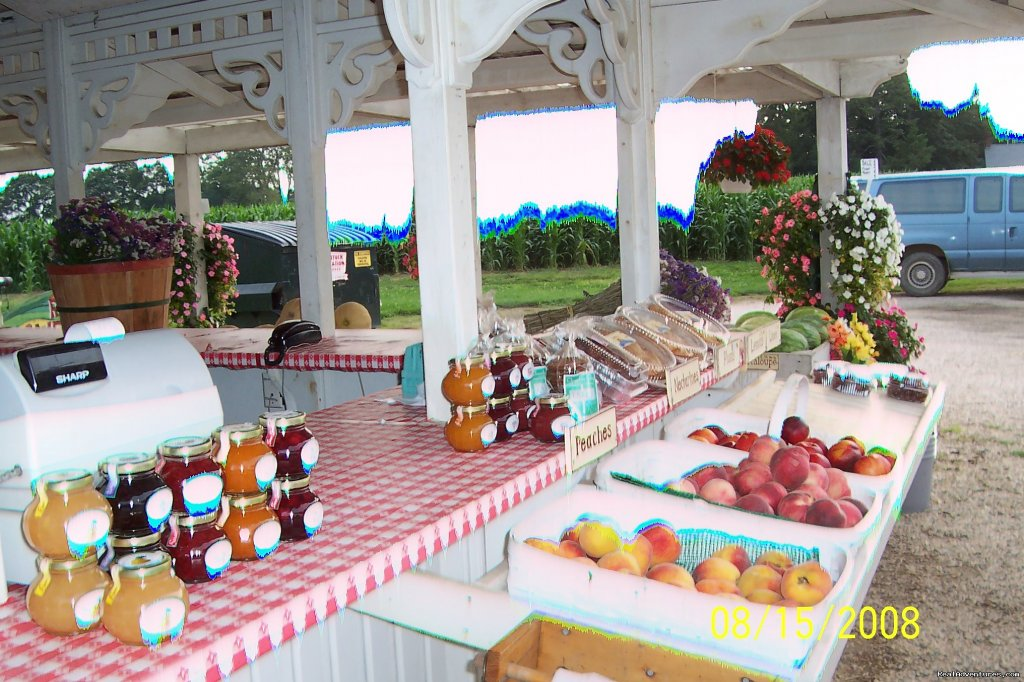 North Fork Wine Country Farm Stand | Image #15/21 | B&B Romantic Getaway near Greenport | Arbor View