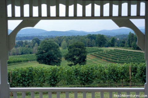 Georgia Wine Country Excursion: Gazebo View from Three Sisters Vineyards