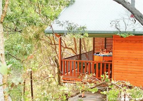 Private spa in the treetops - ALLAWAH RETREAT -Hilltops spa lodges