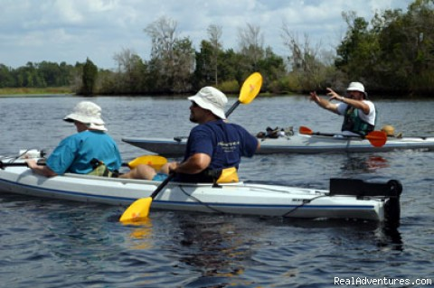 Kayaking Tour on the Ashepoo River - South Carolina's Low Country Excursion