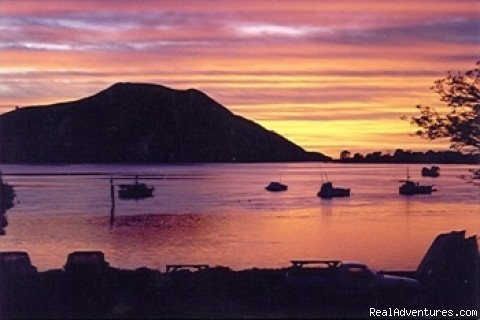 Sunrise Houhora Harbour - Houhora Lodge & Homestay