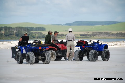 Quad bikes on Great Exhibition Bay - Houhora Lodge & Homestay