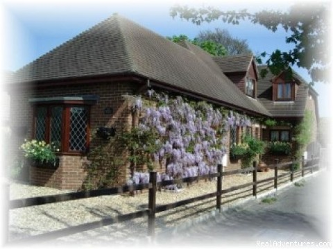 Bed and Breakfast at Wisteria House