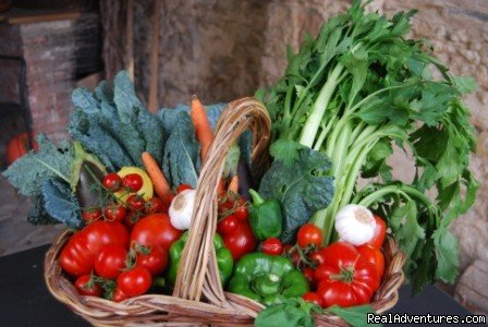 Vegetables for Tuscan Soup | Image #19/24 | Toscana Mia