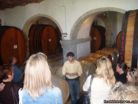 Winery - Toscana Mia