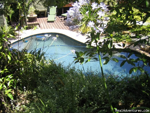 - Hout Bay Hideaway a small luxurious guest house