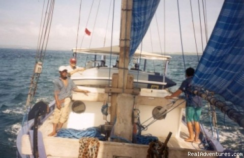 Go Sailing c - Dive & Sail Cruises and Safaris from Bali