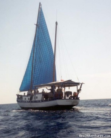 Condor Sailing 2 - Dive & Sail Cruises and Safaris from Bali