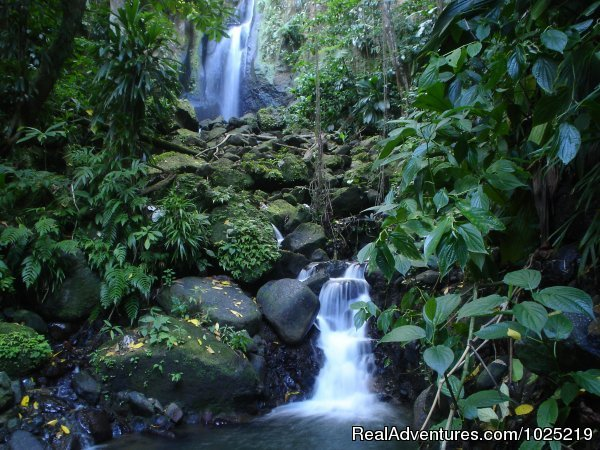 A Local Waterfall | Image #4/11 | 3 Rivers Eco Lodge