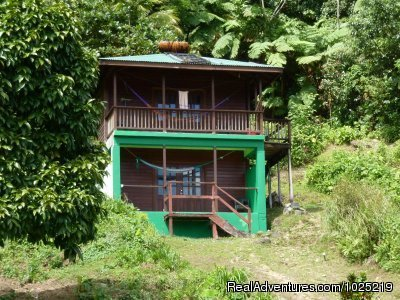 Ocean View And Lime Apartment | Image #5/11 | 3 Rivers Eco Lodge