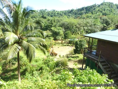 3 Rivers Eco Lodge: Property View