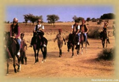 Horse Safari - Camel Safari In The Thar (Rajasthan)