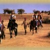 Camel Safari In The Thar (Rajasthan)