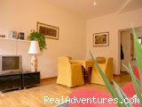 living-room - Apartment in Rome - Via dei Greci