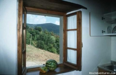 - Villa Cuiano