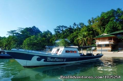 Bastianos Diving Resort at Bunaken: Diving the great walls of Bunaken
