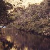 Fly Fishing Australia wilderness streams horseback