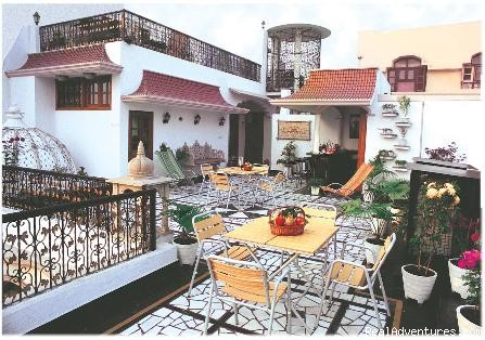 Terrace Garden - Bajaj Indian Home Stay