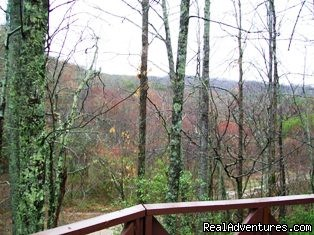 Mountain view from deck! - A Singing Creek Awaits You At This Mtn Cabin