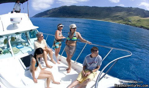 The pleasure is in the Journey onboard the Alaka'i - Whale Watching, Swim with Dolphins, Turtle Snorkel
