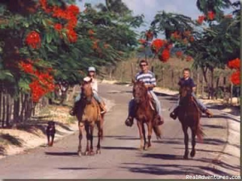 Horseback-riding on premises - Haciendas El Choco