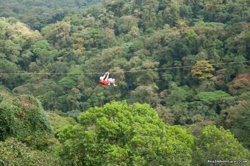Zip line canopy tour over the tops of the trees | Image #6/19 | Bill Beard's Costa Rica 2017-18 Vacation Packages