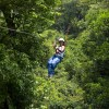 Tree top canopy tour over and through the rainforest