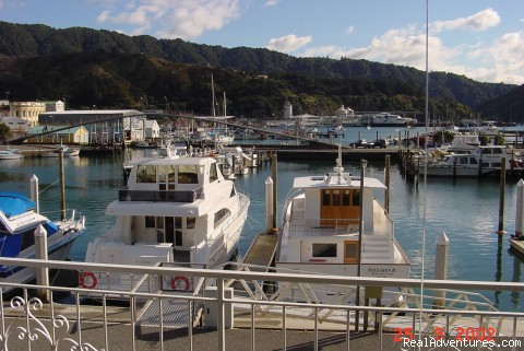 View from balcony - The Waterfront Apartments Picton Marina