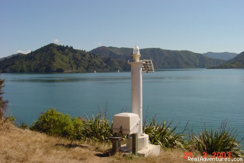 - The Waterfront Apartments Picton Marina
