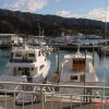 The Waterfront Apartments Picton Marina